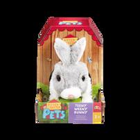 สัตว์เลี้ยง พิตเตอร์แพตเตอร์ กระต่ายน้อยสีเทา-ขาว
