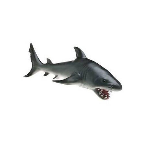 Animal Zone แอนิมอลโซน ฉลาม