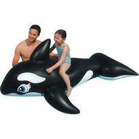 อินเท็กซ์ แพยางลายวาฬ