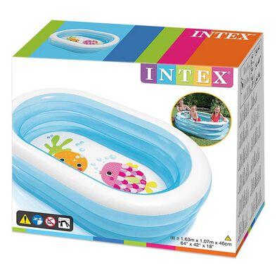 อินเท็กซ์ สระว่ายน้ำสำหรับเด็ก ลายสัตว์โจรสลัด